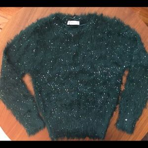 Zara fuzzy green sweater with sequins. NWT